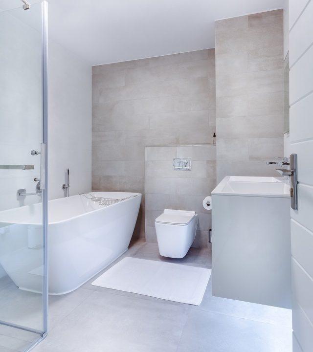 modern minimalist bathroom, interior, toilet-3150293.jpg